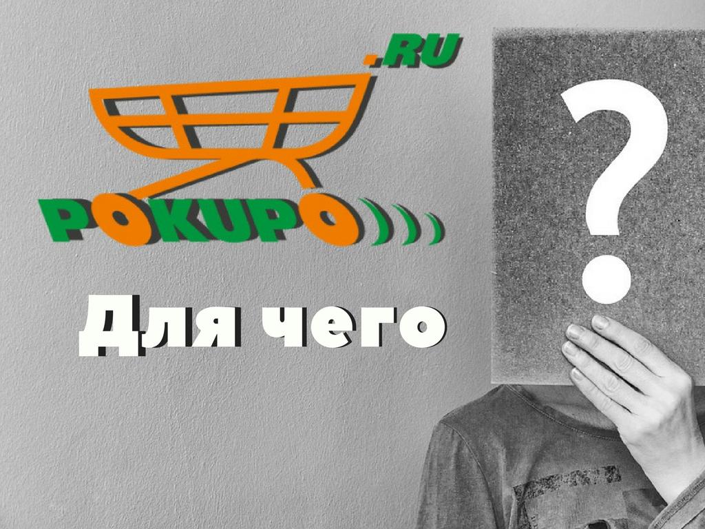 зачем нужна платформа для интернет-магазинов pokupo